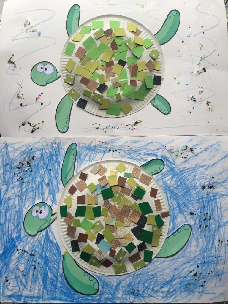 activite, tortue de mer