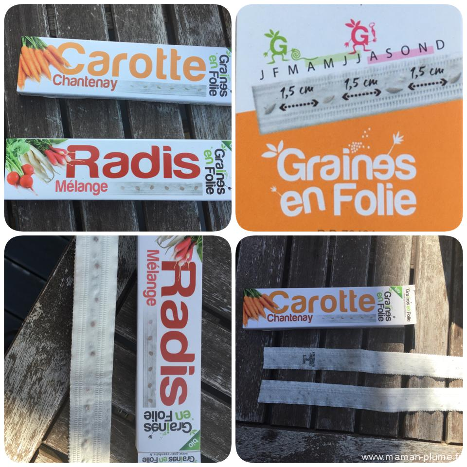 graine carotte kit legume