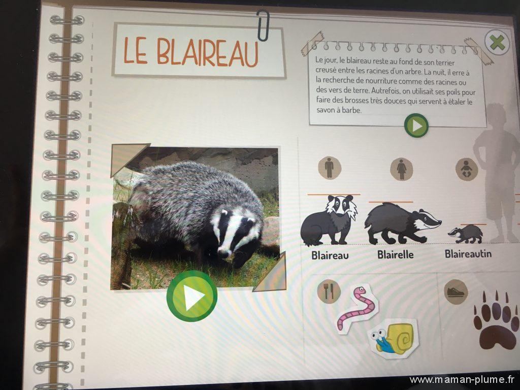 box-pandacraft-octobre-application-foret-fiche-animaux