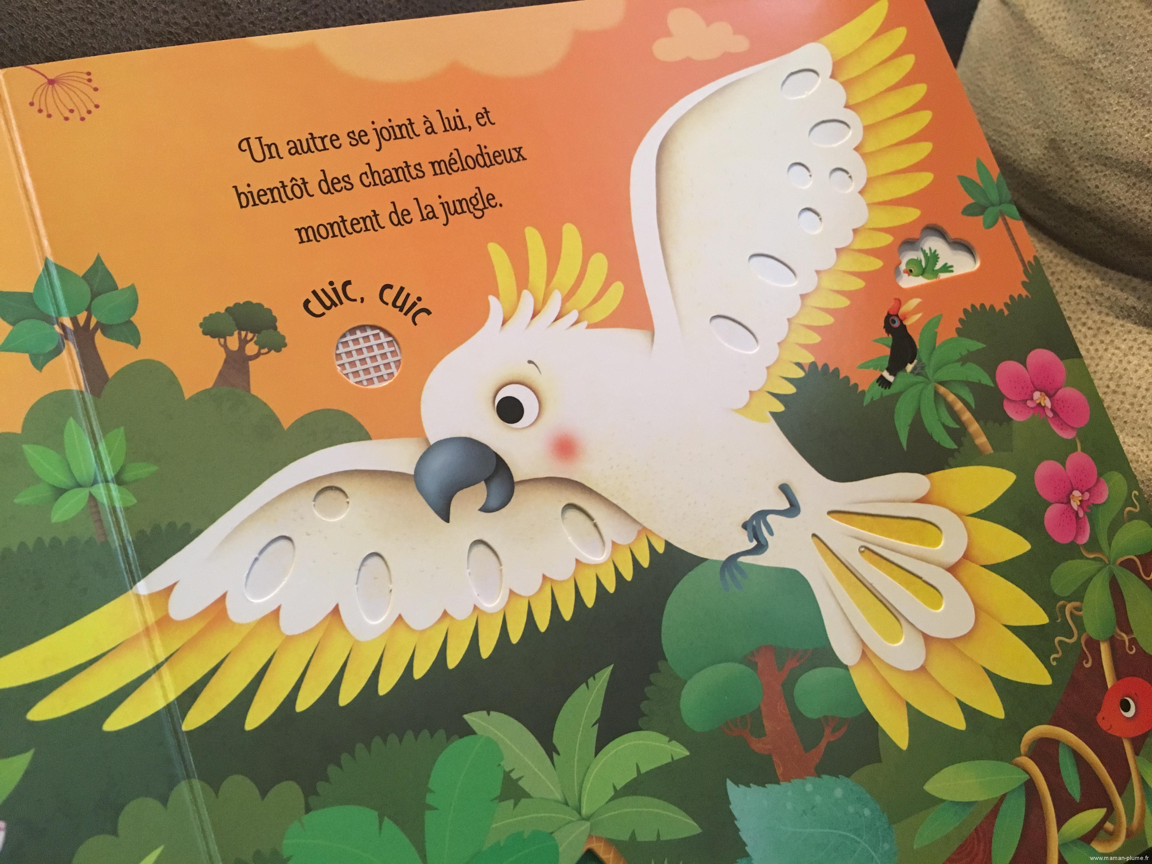 Les bruits de la jungle et les Dinosaures des Editions Usborne