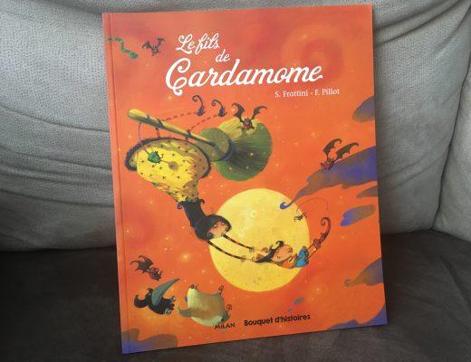 Le fils de Cardamome, bouquet d'histoires Décembre