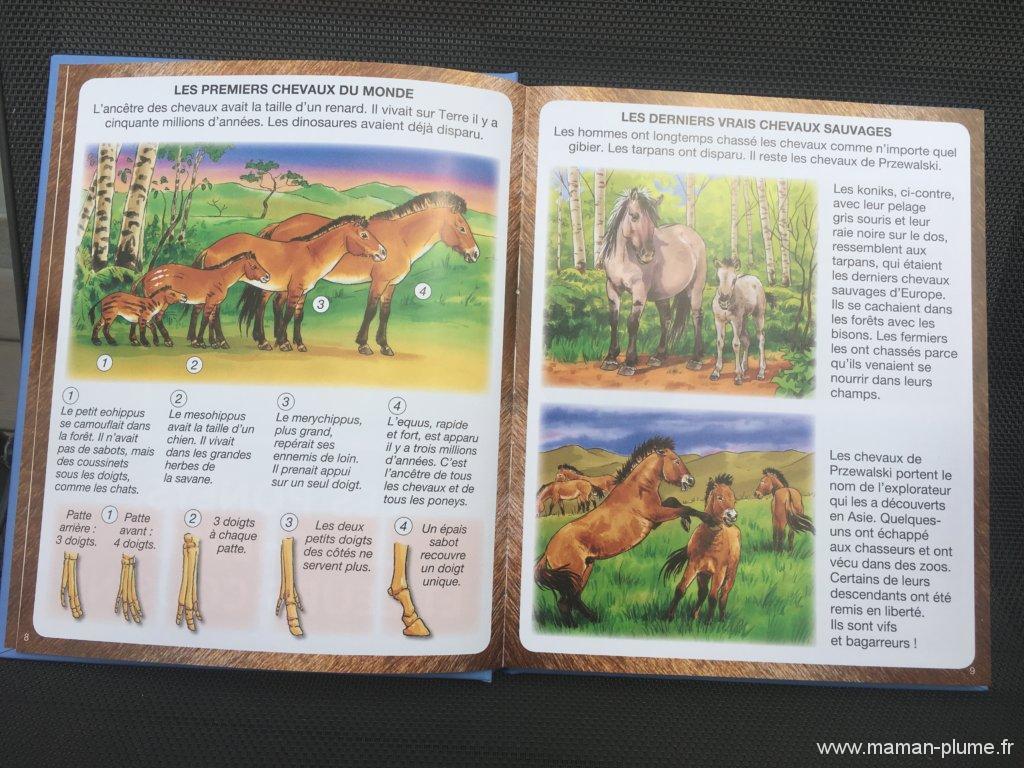 L'imagerie des pompiers, du poney et du cheval – Fleurus