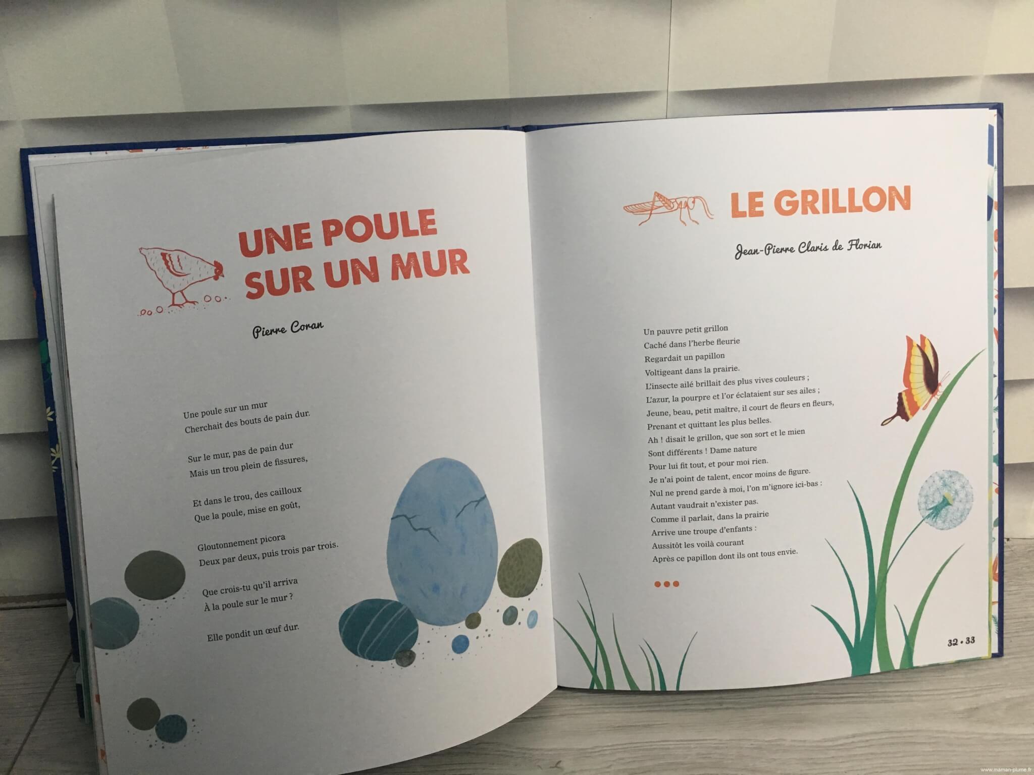 Une Poule Sur Un Mur Edition Ptit Glenat Livre Enfant