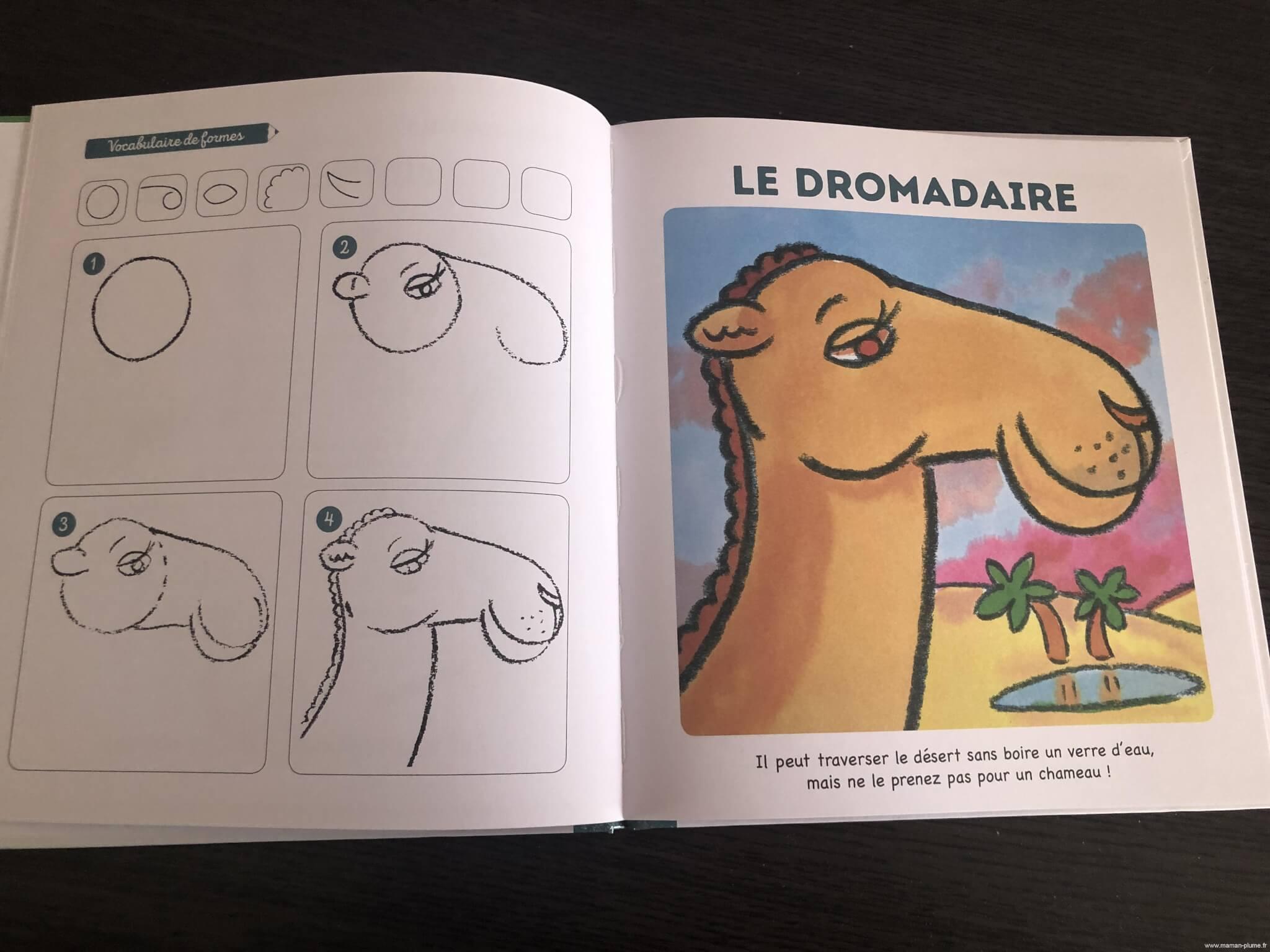 J'apprends à dessiner les animaux du monde des editions Fleurus
