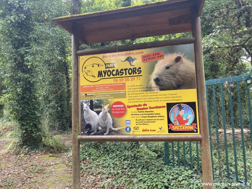 Les Ragondins au parc des Myocastors !